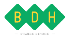 BDH  Strategie in Energie